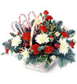 Candy Cane Lane Bouquet