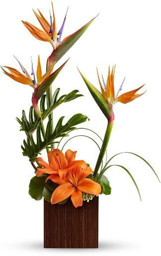 Birds in Paradise Bouquet