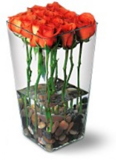 birthday roses, roses with river rocks, dozen roses, birthday present, flowers for a birthday