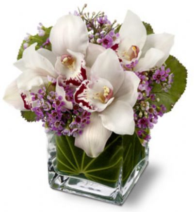 Lovely Orchids Bouquet
