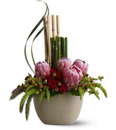 Zen Garden Proteas